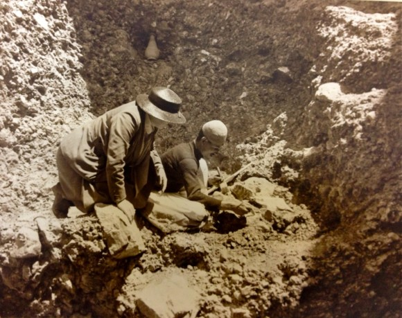 Dorothea Bate and an unnamed workman excavating in Bethlehem in ?1937. An elephant tooth can be seen just behind the man's right arm. Copyright Natural History Museum, London. With thanks to Karolyn Shindler for providing the digital image.